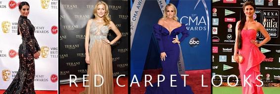 Red Carpet Looks