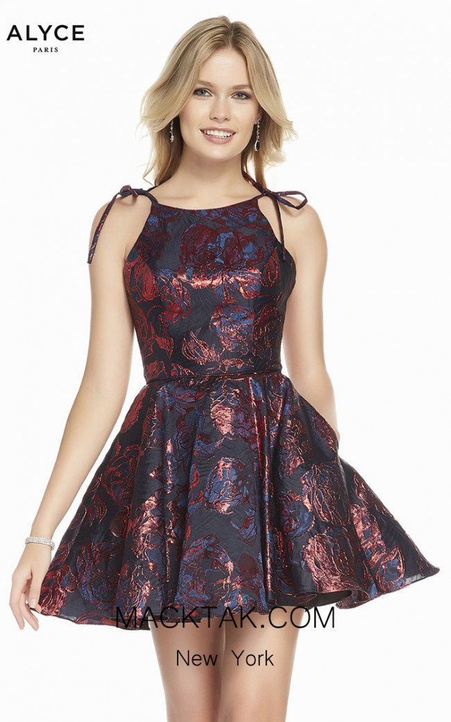 Alyce Paris 3914 Front Dress