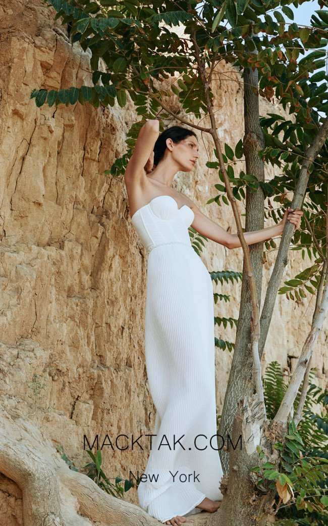 Pollardi Mermaid Front Dress
