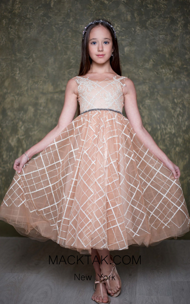 Pollardi 1021 Coffee Front Dress