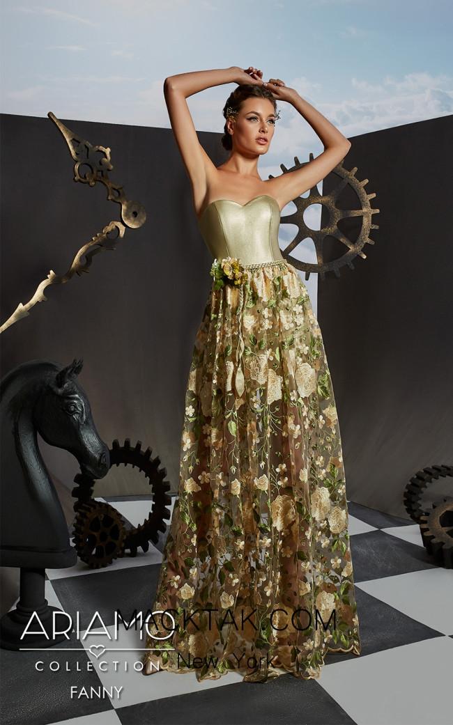 Ariamo Fanny Front3 Dress