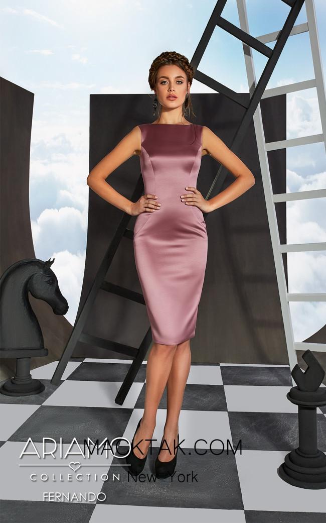 Ariamo Fernando Front Dress