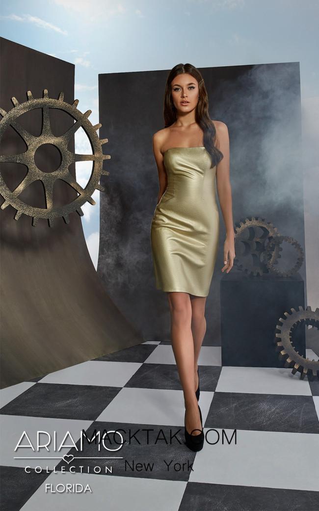 Ariamo Florida Front Dress
