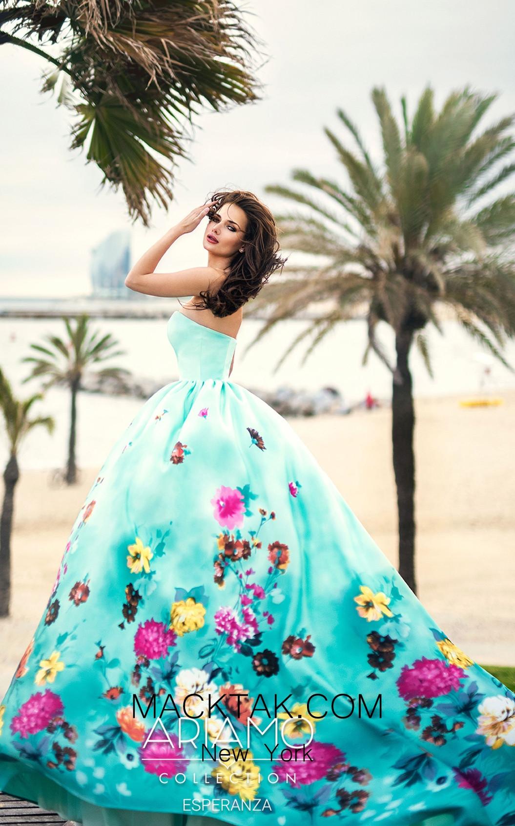 Ariamo Esperanza Saide Dress