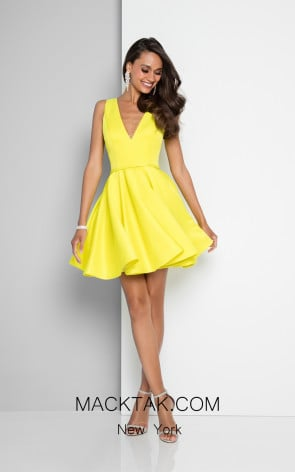 Terani 1812P5140 Acid Yellow Front