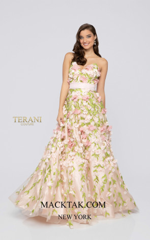Terani 1911P8546 Blush Multi Front Dress