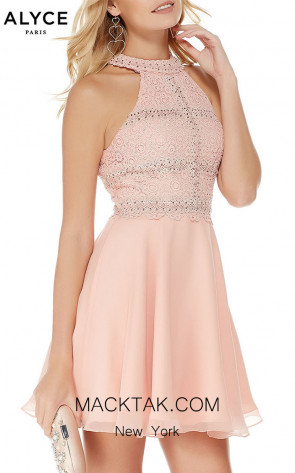 Alyce Paris 2660 Front Dress