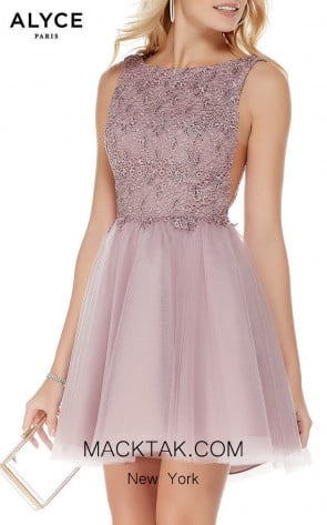 Alyce Paris 3801 Front Dress
