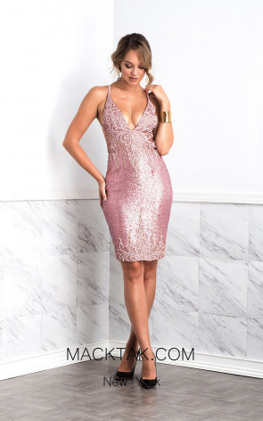 Baccio Luz Painted Pink Front Dress
