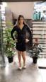 TK MT3971 Black Front Short Dress