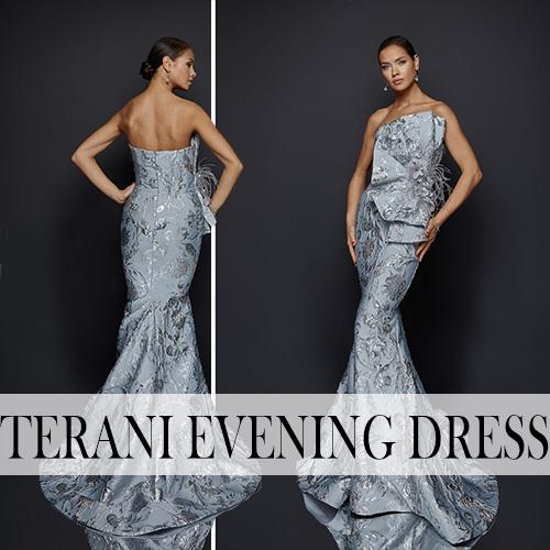 terani couture_Evening